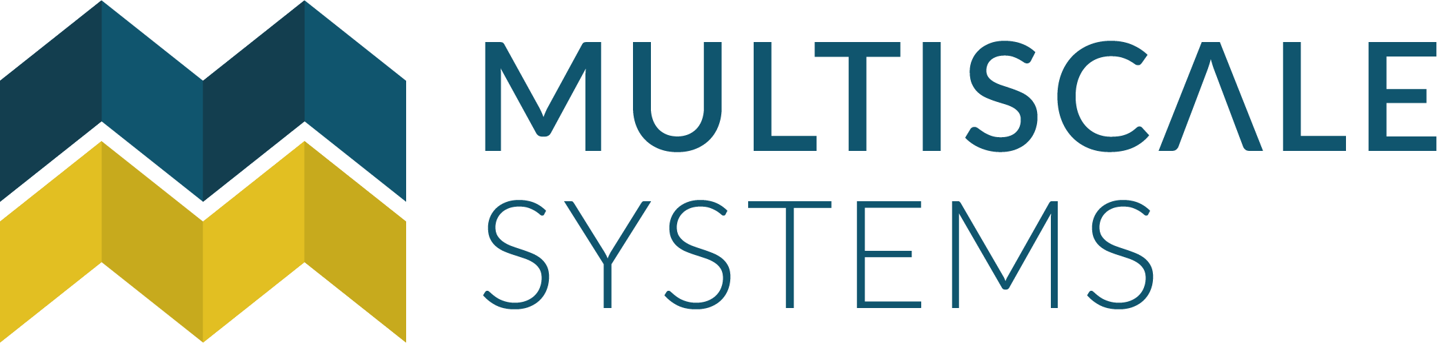 Multiscale Systems logo